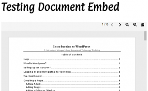 Embed Document Viewer