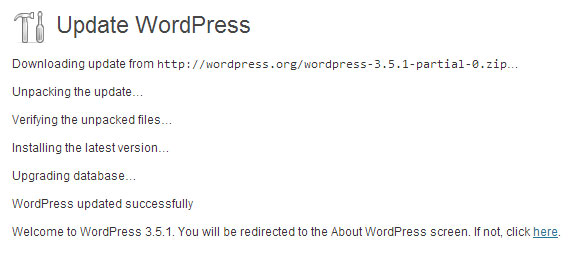 guide on automatic updating wordpress