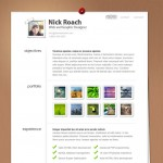15 Best WordPress Themes for Creating Resume and Profile