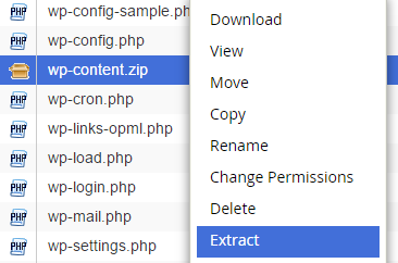 extract wp content zip