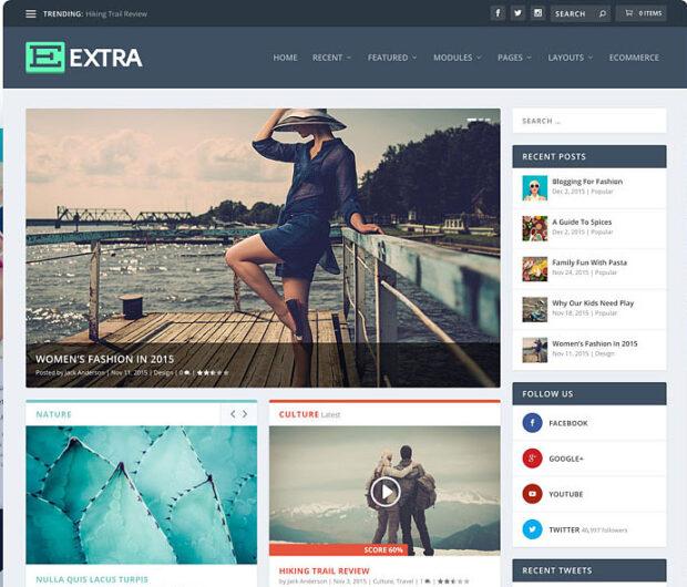 Elegant themes - Extra
